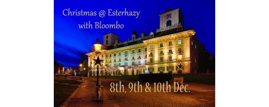 2017.12.08-10: Bloombo @ Schloss Esterhazy Christmas Market, Eisenstadt